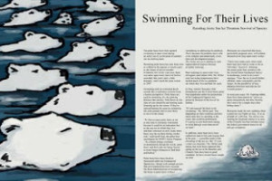 Plight of the Polar Bears (Sketch)