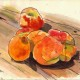 Carter's Mountain Orchard Peaches