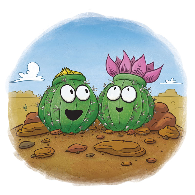 cute cactus desert bloom by illustrator Scott DuBar