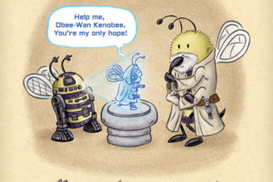 May the Force Bee With You!